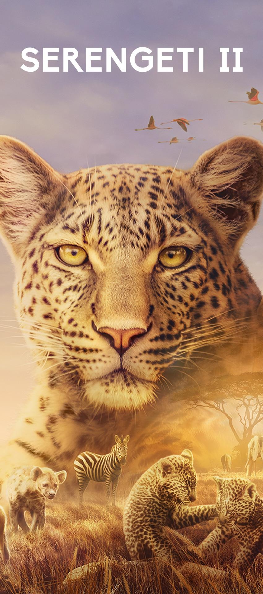 Serengeti II iconic