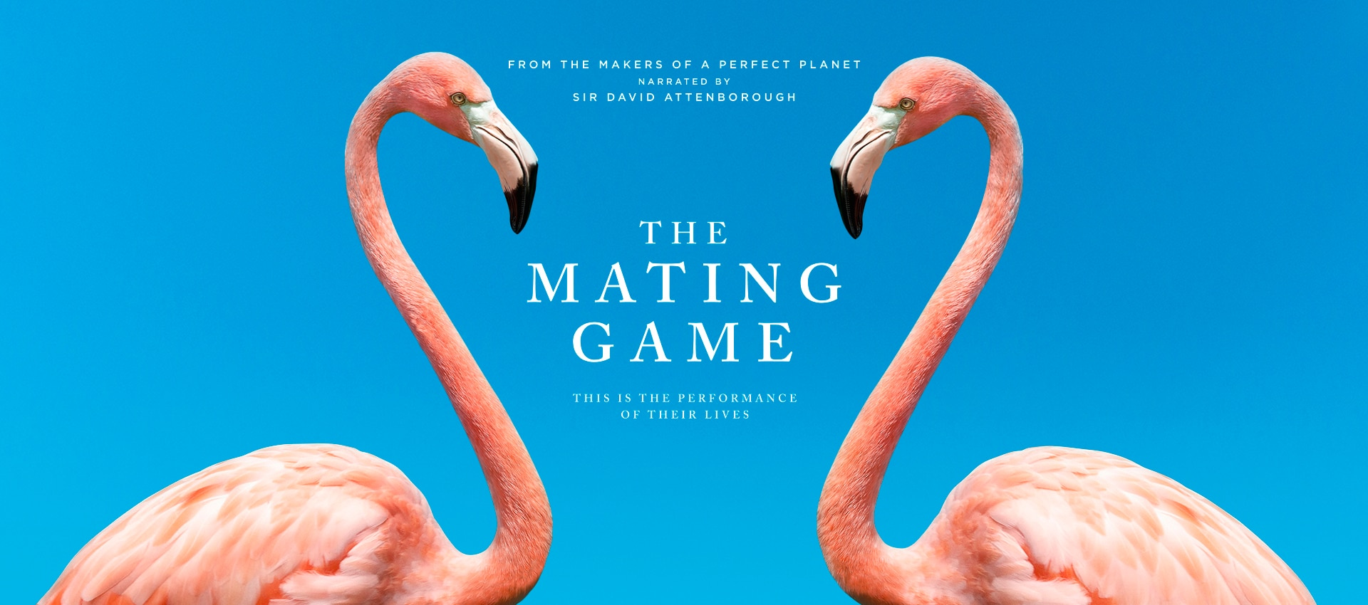 The Mating Game iconic