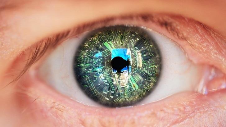 A human and robot eye
