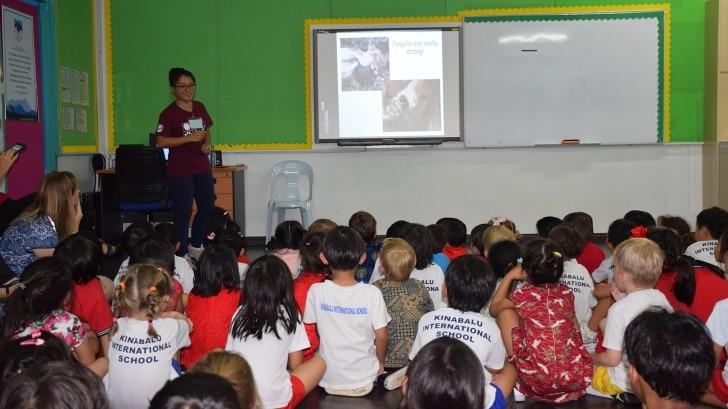 Pangolin awareness talk with preschool kids