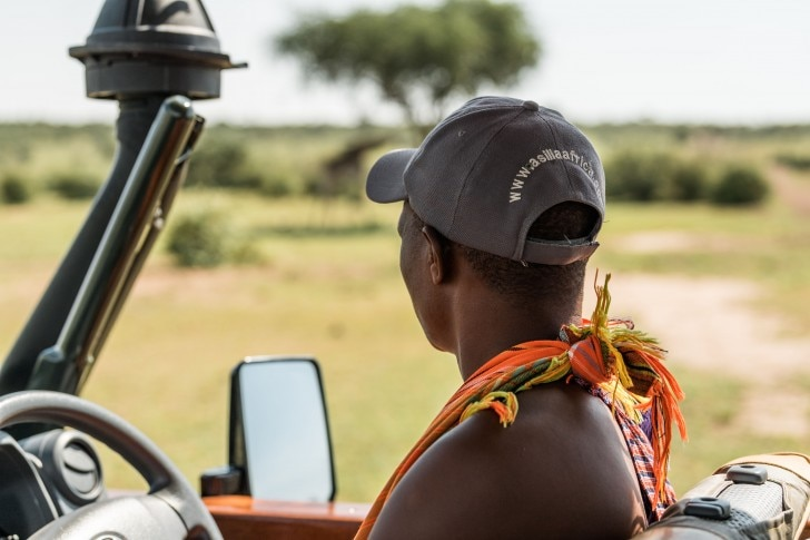 man looking out to animals in the wild