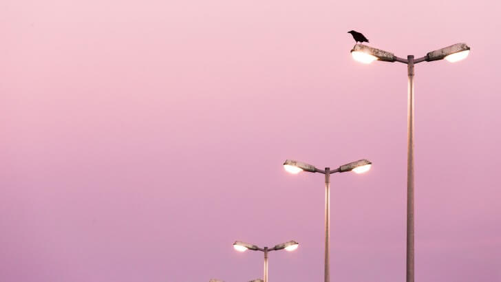 Three streetlights against a pink sky