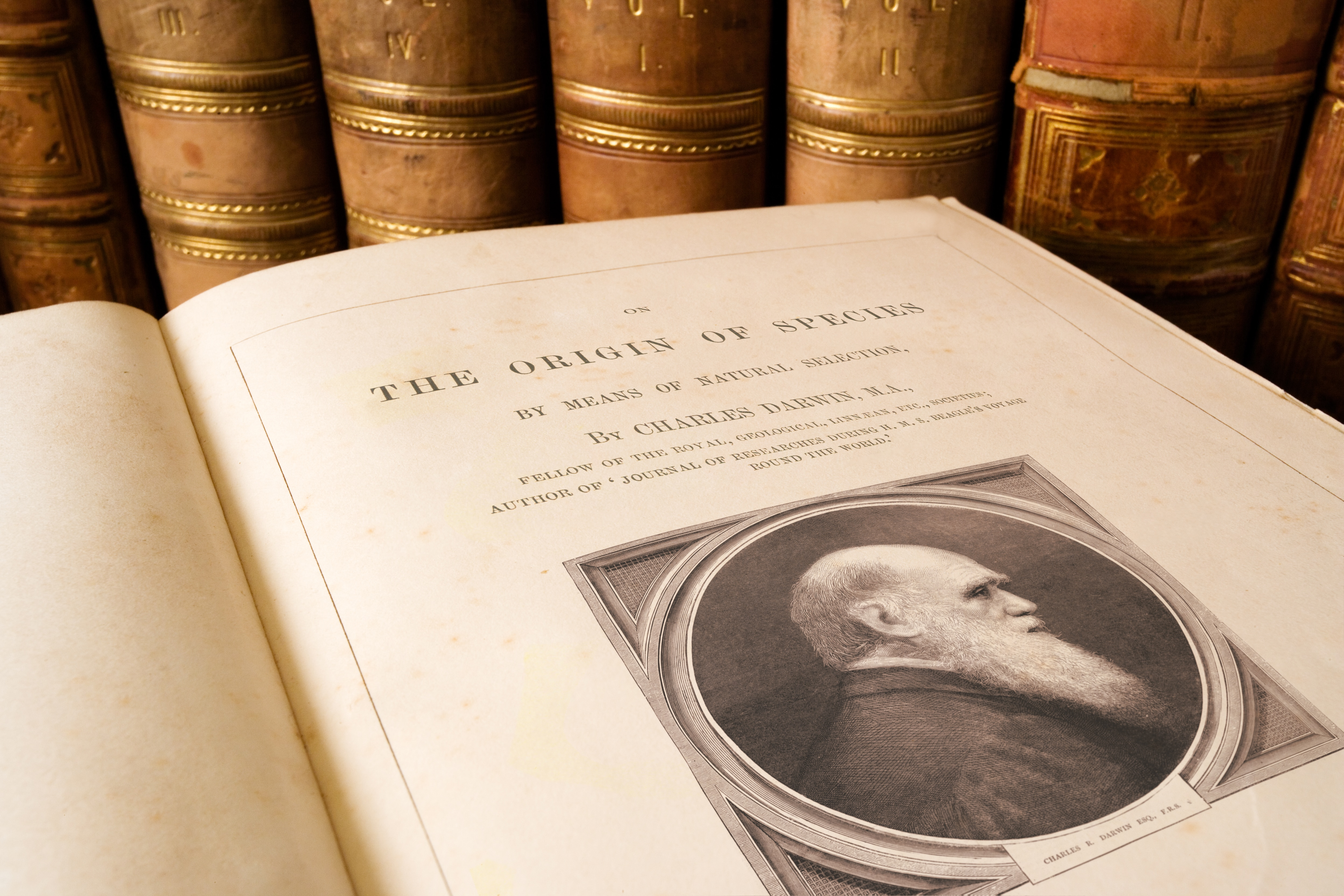Origin of Species book by Charles Darwin