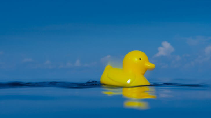 A yellow rubber duck floats on top of blue water