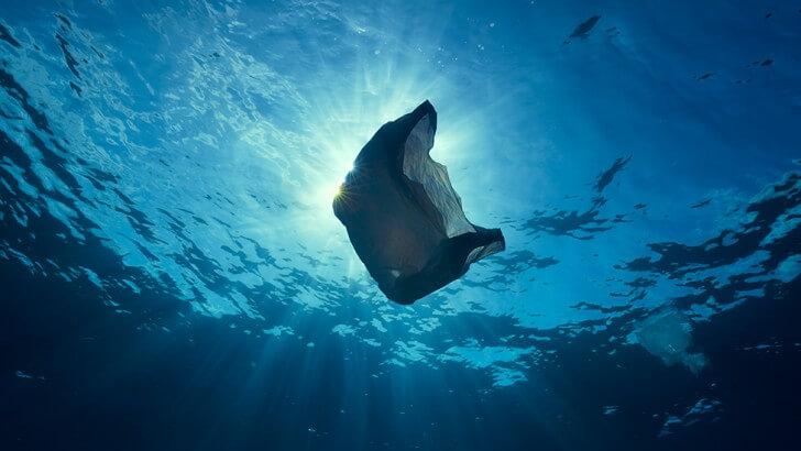 A plastic bag floating underwater