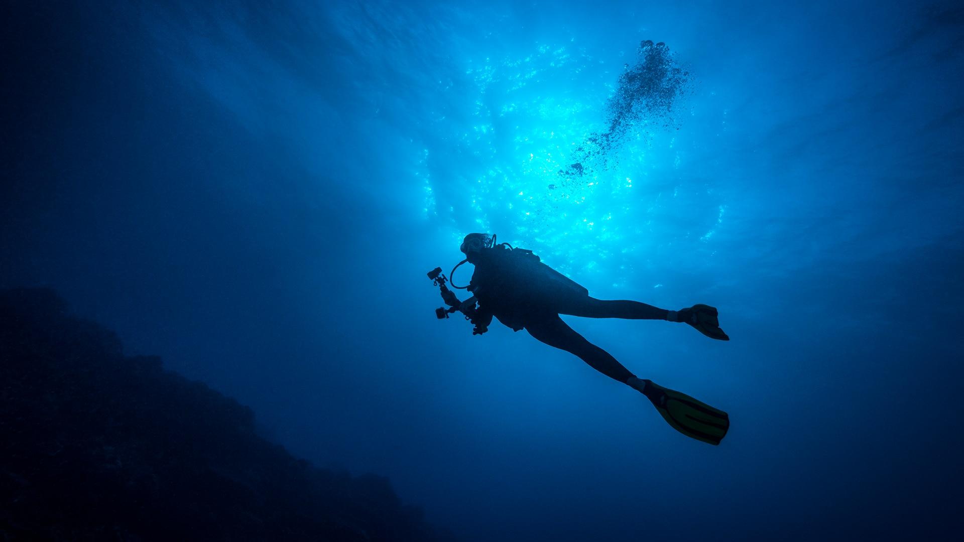 Diver swimming in the ocean